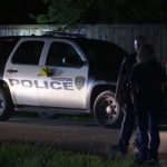 Man investigating dogs barking overnight finds dead body in ditch near his home