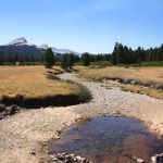 California droughts continue to worsen as fire season approaches